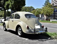 "'64 VW TYPE-Ⅰ BEETLE  ""SLIDING ROOF"":2"
