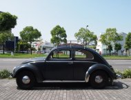 "'53 VW TYPE-Ⅰ BEETLE "" The First Period "":1"